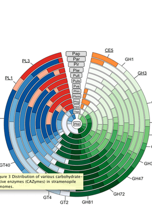 Circular genome visualization and data visualization with Circos: Comparative Genomics Reveals Insight into Virulence Strategies of Plant Pathogenic Oomycetes (310 x 427)