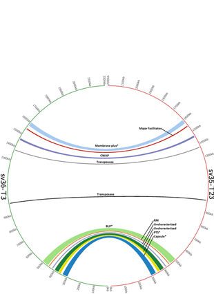 Circular genome visualization and data visualization with Circos: In vivo capsular switch in Streptococcus pneumoniae - analysis by whole genome sequencing (310 x 427)