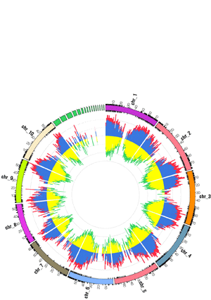 Circular genome visualization and data visualization with Circos: Comparative Genomics in Switchgrass Using 61,585 High-Quality Expressed Sequence Tags (300 x 427)