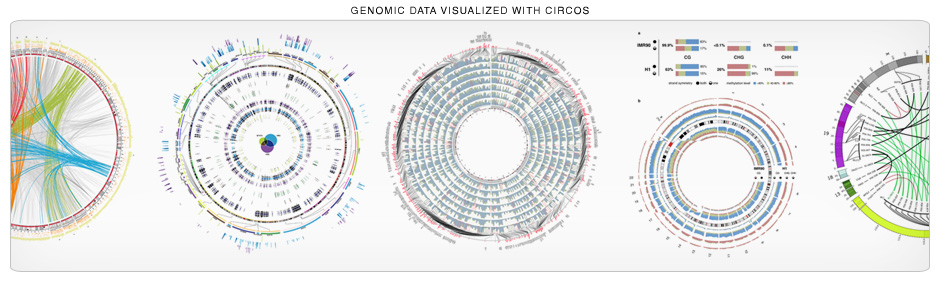 Circos is great for genomic data. Your genomic data! (940 x 281)