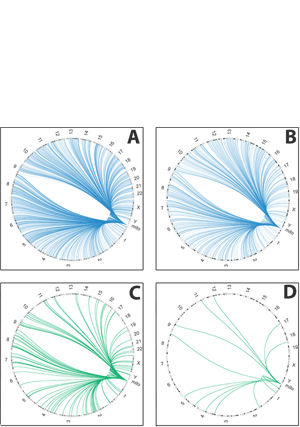 Circular genome visualization and data visualization with Circos: Population bottlenecks as a potential major shaping force of human genome architecture (300 x 427)