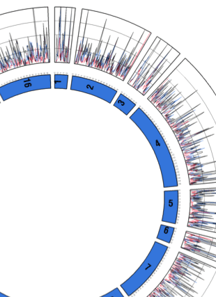 Circular genome visualization and data visualization with Circos: Inferring genome-wide recombination landscapes from advanced intercross lines: application to yeast crosses (310 x 427)
