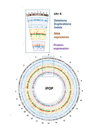 Circular genome visualization and data visualization with Circos: iPOP Goes the World: Integrated Personalized Omics Profiling and the Road toward Improved Health Care (310 x 427)