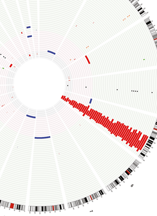 Circular genome visualization and data visualization with Circos: Response to lenalidomide in myelodysplastic syndromes with del(5q): influence of cytogenetics and mutations (310 x 427)