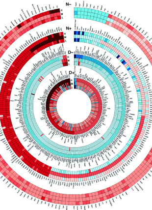Circular genome visualization and data visualization with Circos: Mammary gland morphology and gene expression signature of weanling male and female rats following exposure to exogenous estradiol (310 x 427)