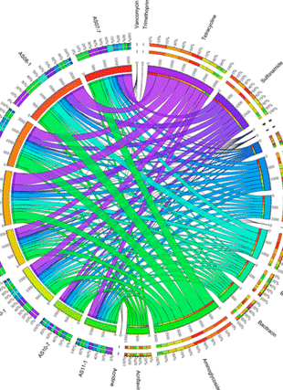 Circular genome visualization and data visualization with Circos: Exploring Variation of Antibiotic Resistance Genes in Activated Sludge over a Four-Year Period through a Metagenomic Approach (310 x 427)